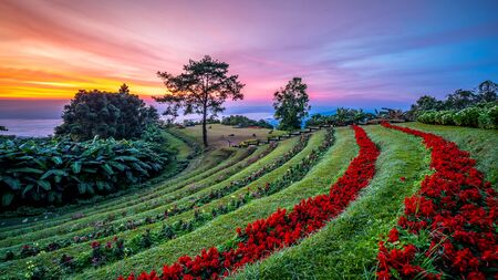 Majestic sunrise and the mountains landscape in morning, Chiang Mai, Thailand. Imagens