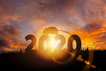 Silhouette of rat with text 2020 Year during golden sunrise or sunset with copy space. Image for Happy new year 2020 concept.