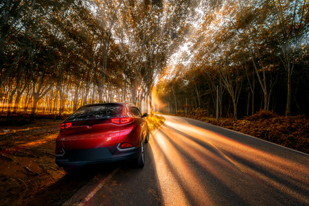 CHIANG MAI, THAILAND - May 13, 2019 :  Car on the country asphalt road through pine forests with rays shining on the foggy beautiful road. Editorial