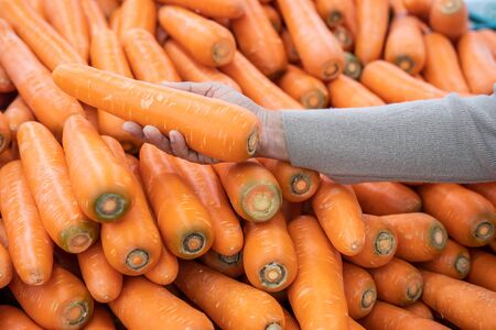 Woman hand choosing fresh carrot from the pile in the supermarket. Shopping for fresh produce , hand close up Stock fotó
