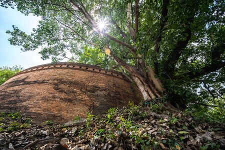 Ancient brick wall also known as Fort of Haiya or Thipanaet and big Bodhi trees in Chiang Mai city, Northern Thailand Imagens