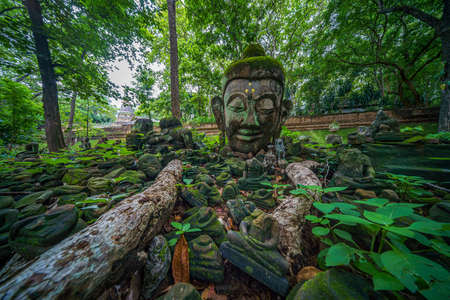 Abandoned ancient head buddha statue in forest