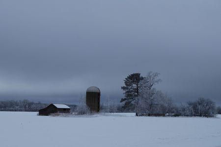 Misty Gray Winters Morning in noordelijke Minnesota