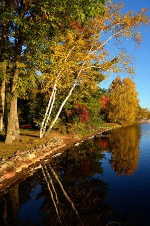 Herfstkleuren langs een rustige oever van het meer Stockfoto