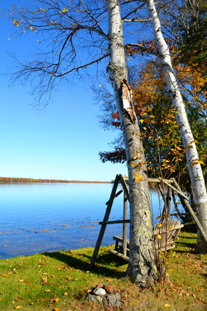 log swing op de oever van een mooi kalm meer