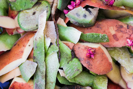 Peel from potatoes and radish. Waste after cooking. Background.
