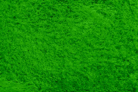 Abstract background with colored short nap. Smooth empty surface of the green. Blank for advertising textiles and fabrics