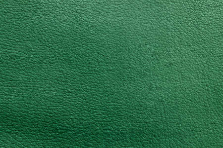 The texture of perforated leather. An empty colored surface. Blank for a design or template for a website.