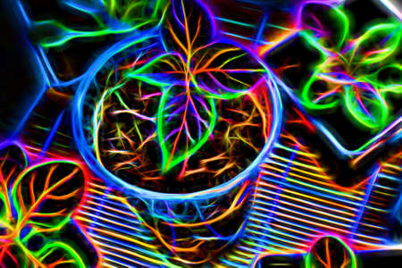 Abstract neon flower. Colorful glowing plants close-up. Top view