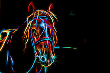Silhouette of a horse in neon treatment. A stylish screen saver with an animal theme.