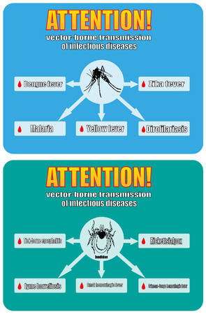 infectious: borne transmission of infectious diseases. the zika virus, Borrelia Lyme, tick-borne encephalitis, malaria, dengue