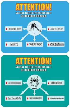 Transmisión a través de las enfermedades infecciosas. el virus Zika, Borrelia de Lyme, encefalitis transmitida por garrapatas, la malaria, el dengue