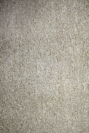 neutral background: Carpet texture for background