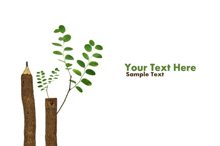 educazione ambientale: Concetto alberi che crescono su una matita dopo il riscaldamento globale isolare sul bianco (con testo di esempio)