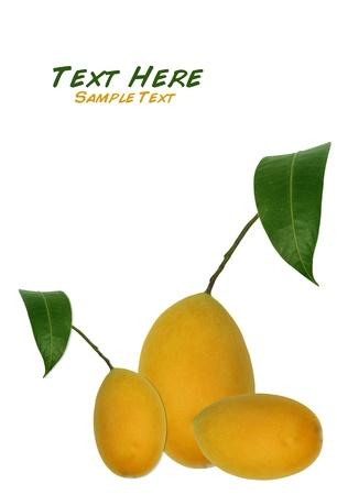Bouea oppositifolia,Exotic Thai Fruit isolate on white background photo