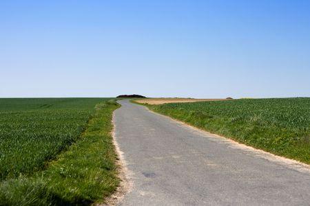 Farm road between green fields, under clear blue sky. Stock Photo - 3110743