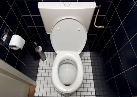 Toilet in blue and white