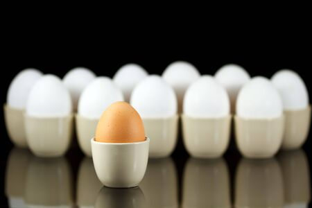 one brown egg in front of white eggs Stock Photo - 6389987