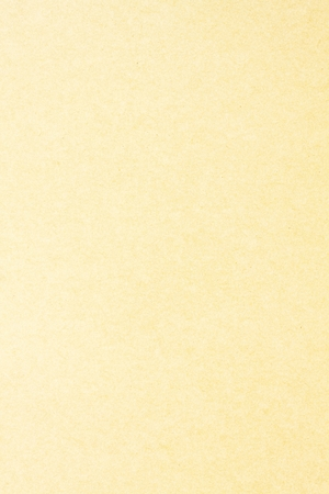 vintage backgrounds: Brown paper texture