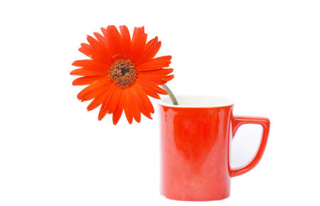 blanked: Red Gerbera flower in red coffee cup Stock Photo