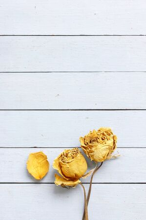 Dried rose on wooden table