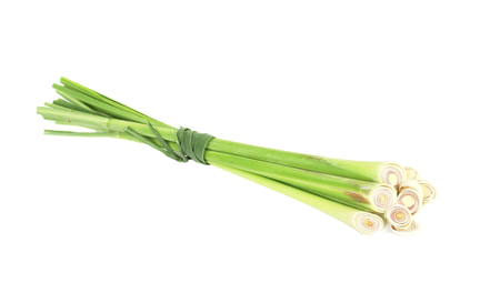 lemongrass: Lemongrass Stock Photo