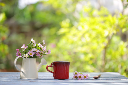 flower in white pot and red cup
