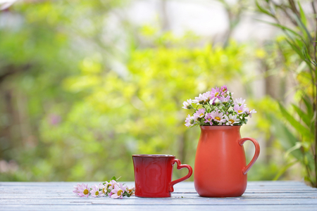 flower in red pot with red cup Stock Photo