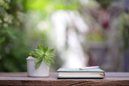 Notebook and small plant pot on wooden table