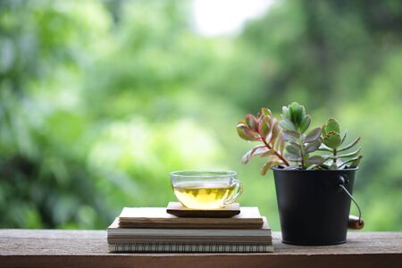 Greentea in transpalent glass and diary notebook with tree plant pot on wooden table Stockfoto - 131290305
