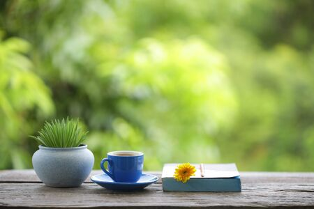 blue tea cup and small plant pot with diary notebook on wooden table Stockfoto - 132618119