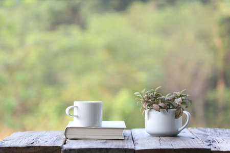 Notebook and white coffee cup with red plant Nerve plant in small cup pot on wooden table at outside