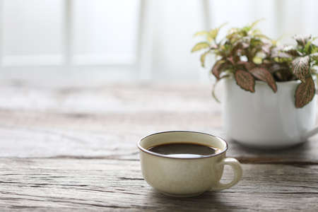 Coffee in vintage cup and plant on wooden table Stockfoto