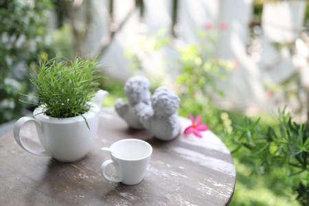 Empty white coffee cup with pink plumeria flower and plant on wooden table at exterior