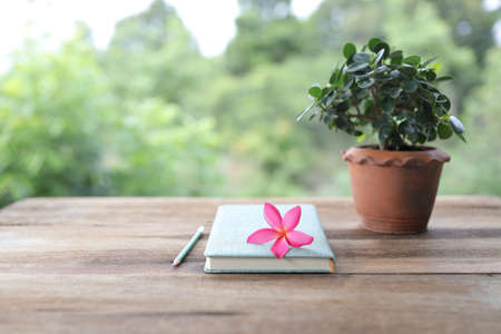 Frangipani flower with diary notebook and pencil with plant pot on wooden table