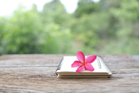 Frangipani flower with white notebook and pencil on wooden table Banque d'images - 157131638