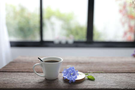 White coffee cup with blue plumbago flower on rustic wooden dinning table interior home Banque d'images