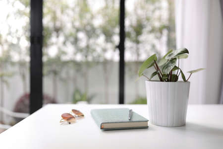 Notebook with plant and sunglasses with green notebook on white wooden table interior house