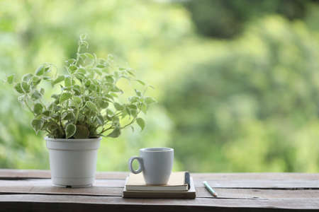 Cup with plant pot and brown notebook with pencil on wooden table with nature background Banque d'images
