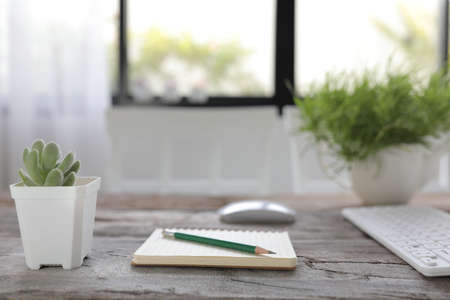 White coffee cup with notebook and pencil and small succulent plant on rustic wooden dinning table interior home