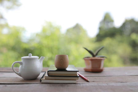 Tea cup with tea pot and aloe vera plant with notebooks and pencil on wooden table Banque d'images