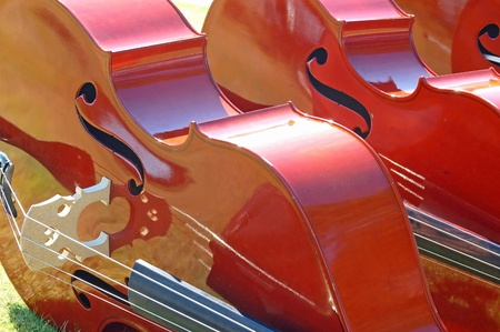 cellos: Cellos at an Outdoor Concert Stock Photo