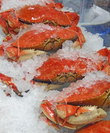 Krabben op Ijs Stockfoto