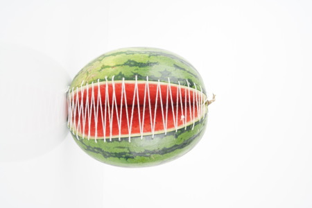 fresh green watermelon