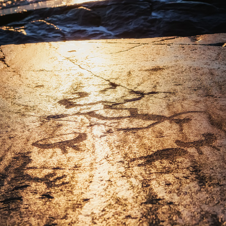 onega: Fragment of Onega petroglyphs at sunset - prehistoric rock engravings carved on a granite plate . Age of object - 5000-6000 years. Cape Besov Nos, Karelia, Russia.