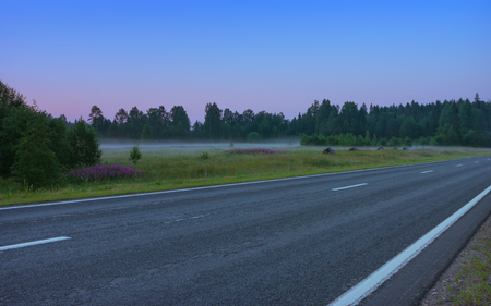Empty straight asphalt road among flowering meadows under the cloudless blue sky in the early misty morning. Russian federal highway A119 in the White Nights season.