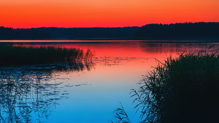 Beautiful night view of a lake with a reed under the red sky after a summer sunset. Long exposure, selective focus, space for copy. Russia, Tudozero.