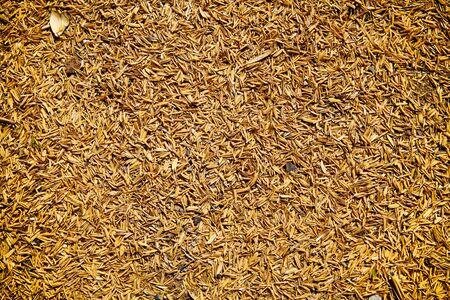 chaff: rice-husk Background