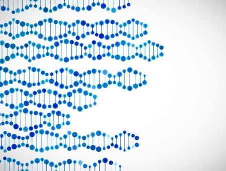 beautiful structure of the DNA molecule Stock Vector - 18361371