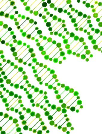 deoxyribonucleic acid: beautiful structure of the DNA molecule Illustration